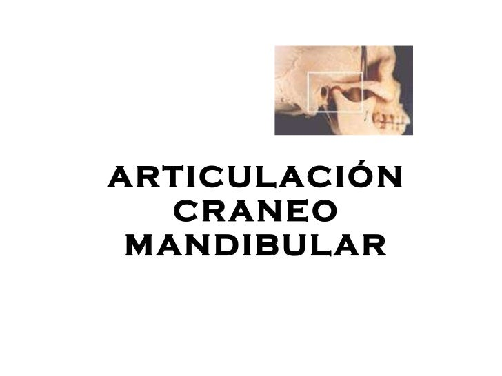 ARTICULACI Ó N CRANEO MANDIBULAR