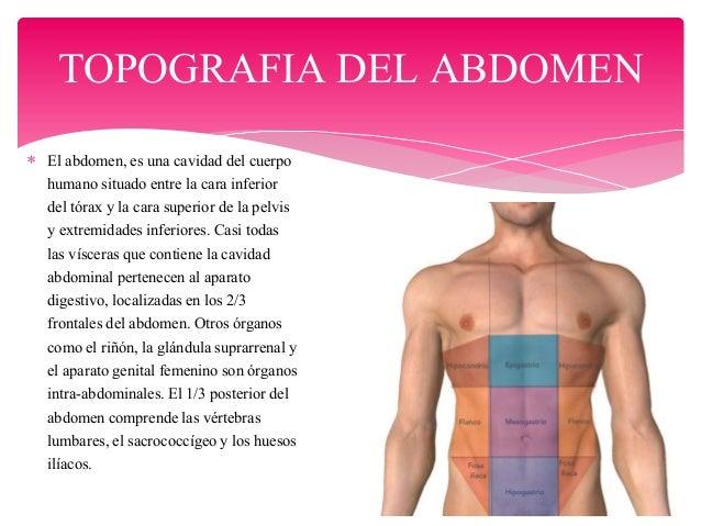 Results for Anatomia Topografica Del Abdomen Humano