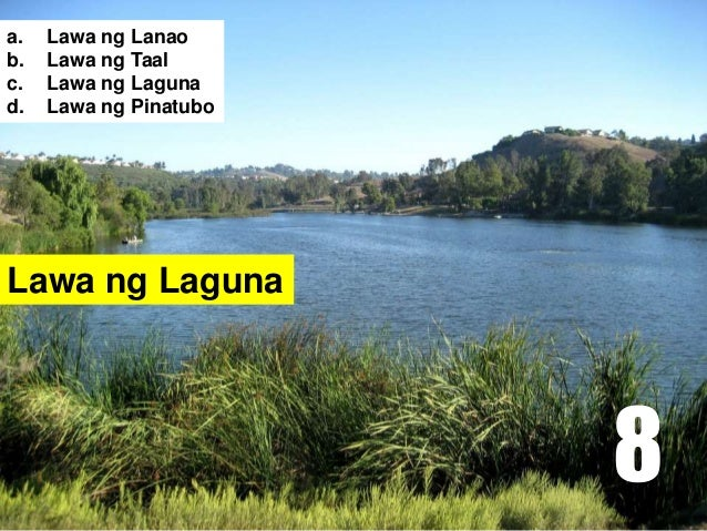 Lawa ng Laguna a. Lawa ng Lanao b. Lawa ng Taal c. Lawa ng Laguna d. Lawa ng Pinatubo 8