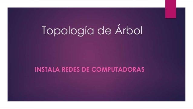 Topología de Árbol  INSTALA REDES DE COMPUTADORAS