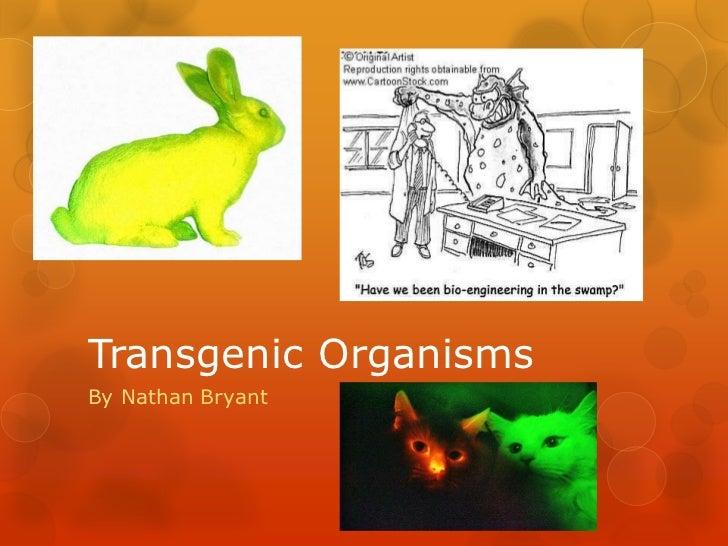 Transgenic OrganismsBy Nathan Bryant