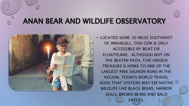 ANAN BEAR AND WILDLIFE OBSERVATORY • LOCATED SOME 30 MILES SOUTHEAST OF WRANGELL, THIS GEM IS ONLY ACCESSIBLE BY BOAT OR F...