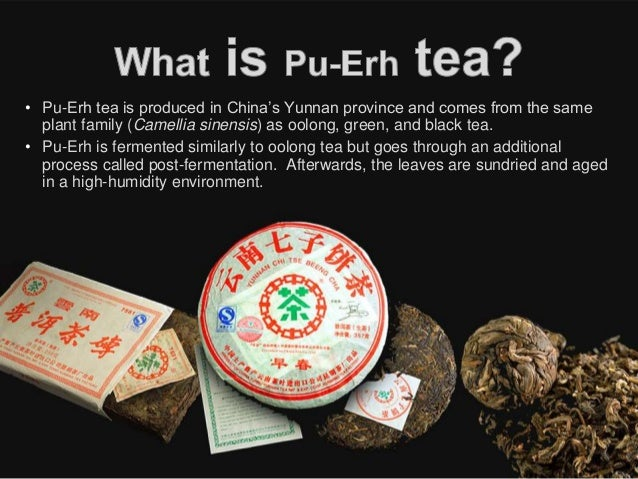 How To Drink Pu Erh Tea