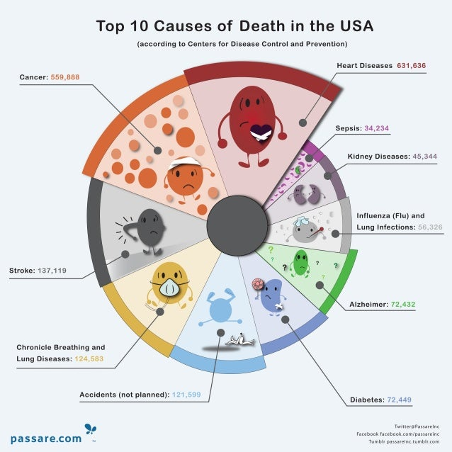 Top 10 Causes of Death in the USA - Infographic