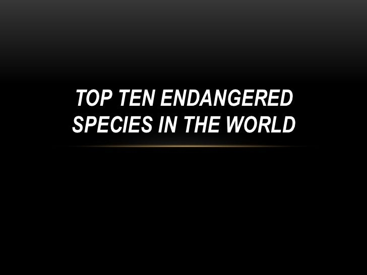 TOP TEN ENDANGEREDSPECIES IN THE WORLD