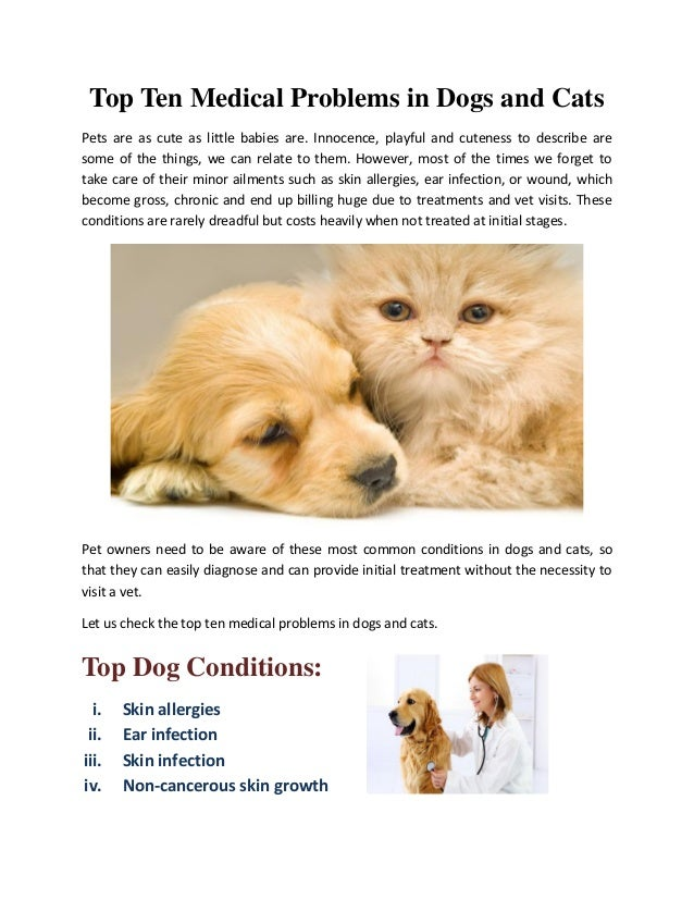 Top Ten Medical Problems in Dogs and Cats Pets are as cute as little babies are. Innocence, playful and cuteness to descri...