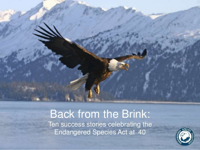 Back from the Brink: Ten success stories celebrating the Endangered Species Act at 40