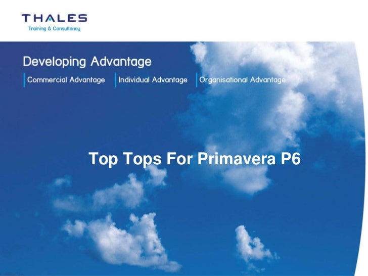 Top Tops For Primavera P6