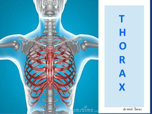 T H O R A X dr med. Šarac 1