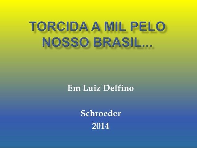 Em Luiz Delfino Schroeder 2014