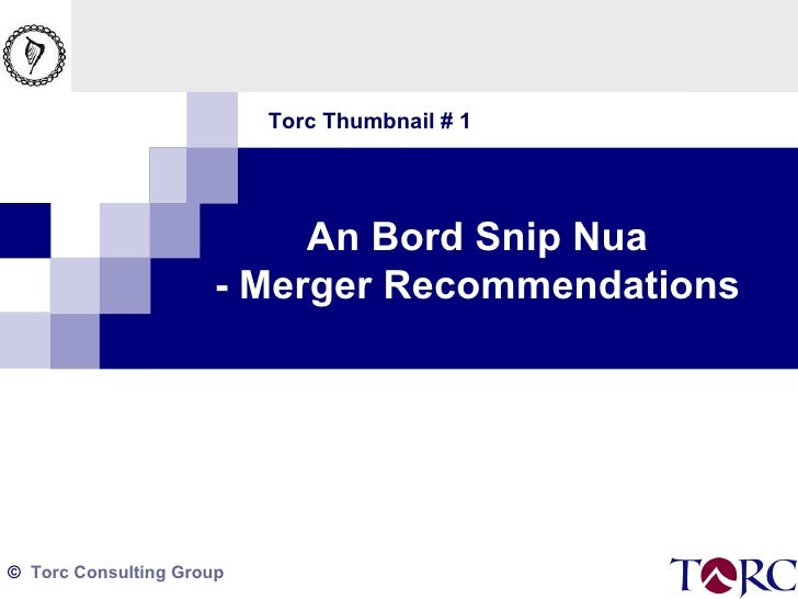 Torc Thumbnail # 1 An Bord Snip Nua - Merger Recommendations