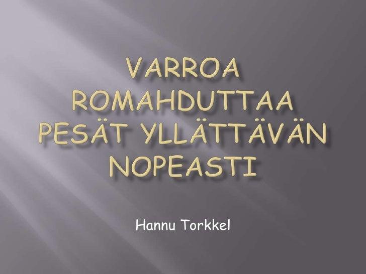 Hannu Torkkel