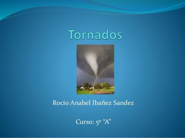 """Rocío Anabel Ibañez Sandez Curso: 5º """"A"""""""