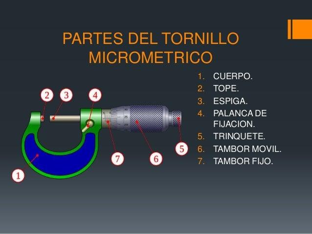 Tornillo micrometrico iutoms for Partes de un vivero forestal
