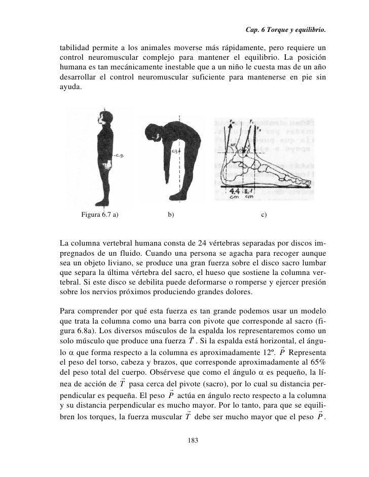 Torque y equilibrio de cuerpo rígido.