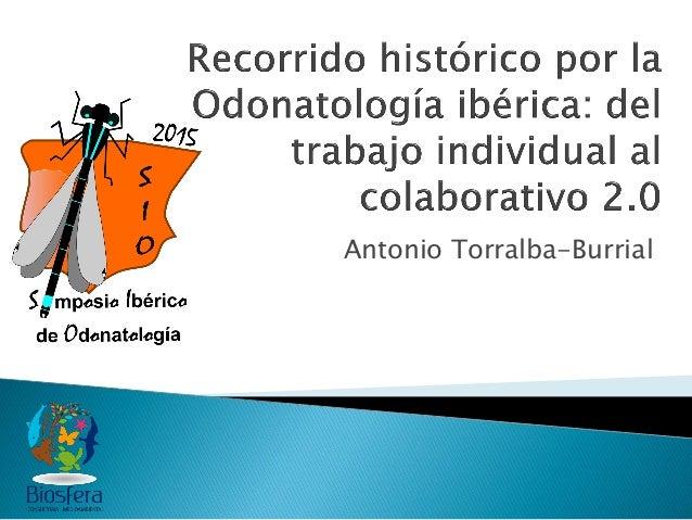 Antonio Torralba-Burrial