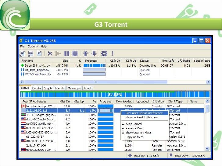 Torrent Protocol
