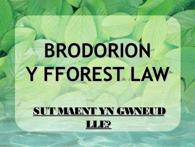 BRODORIONY FFOREST LAWSUT MAENT YN GWNEUD        LLE?
