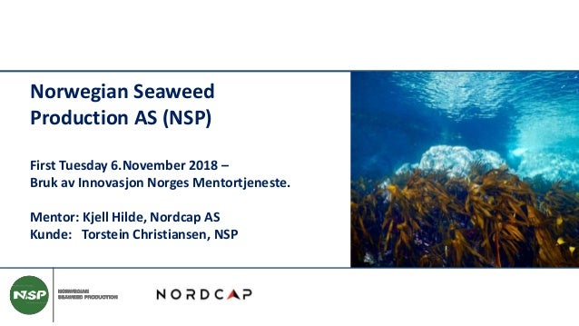 Norwegian Seaweed Production AS (NSP) First Tuesday 6.November 2018 – Bruk av Innovasjon Norges Mentortjeneste. Mentor: Kj...