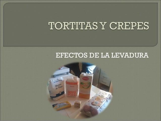 EFECTOS DE LA LEVADURA