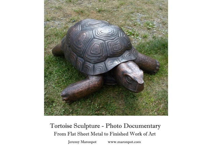 Tortoise Sculpture - Photo Documentary