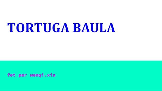 TORTUGA BAULA fet per wenqi.xia