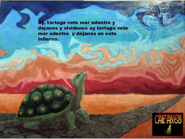 tortuga caifanes