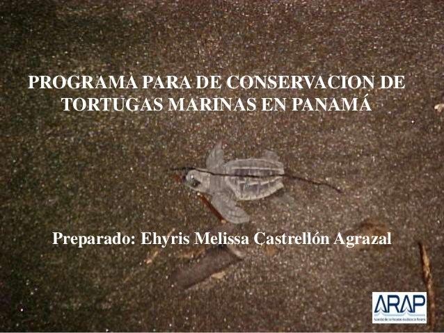 PROGRAMA PARA DE CONSERVACION DE TORTUGAS MARINAS EN PANAMÁ Preparado: Ehyris Melissa Castrellón Agrazal
