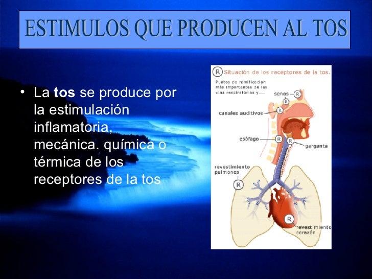 <ul><li>La  tos  se produce por la estimulación inflamatoria, mecánica. química o térmica de los receptores de la tos  </l...