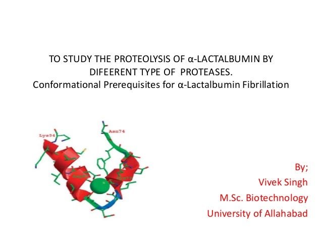 TO STUDY THE PROTEOLYSIS OF α-LACTALBUMIN BY DIFEERENT TYPE OF PROTEASES. Conformational Prerequisites for α-Lactalbumin F...