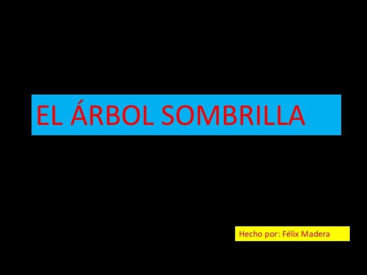 EL ÁRBOL SOMBRILLA             Hecho por: Félix Madera