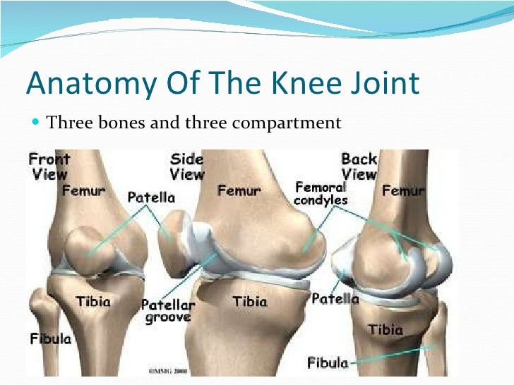 Total Knee Replacement Tkr Ppt