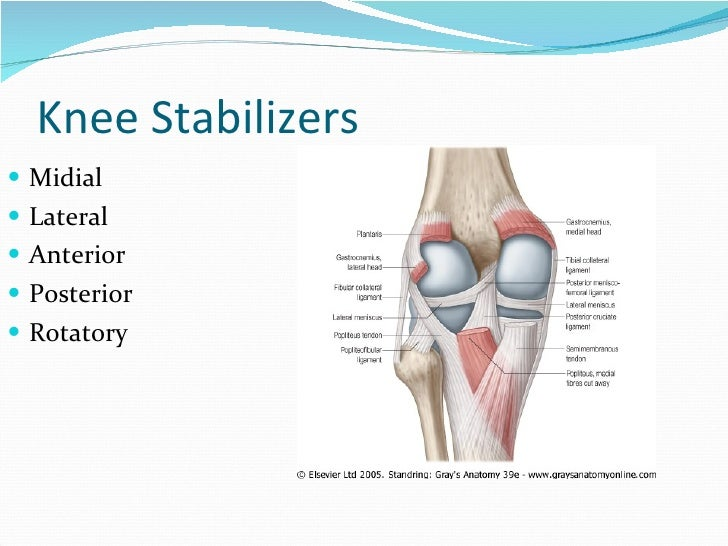 Total knee replacement (tkr) ppt