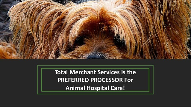 Total Merchant Services is the PREFERRED PROCESSOR For Animal Hospital Care!