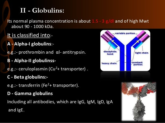 II - Globulins: Its normal plasma concentration is about 1.5 - 3 g/dl and of high Mwt about 90 - 1000 kDa. It is classifie...