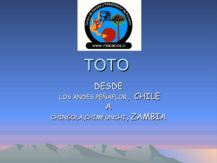 TOTO DESDE LOS ANDES,PEÑAFLOR ,   CHILE A CHINGOLA,CHIMFUNSHI ,   ZAMBIA