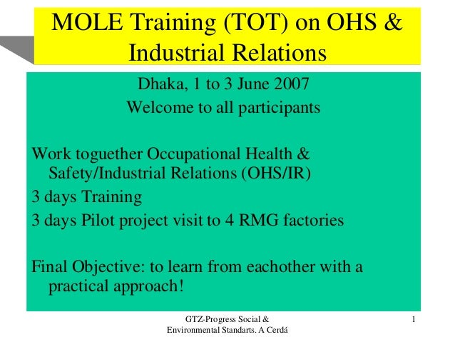 GTZ-Progress Social & Environmental Standarts. A Cerdá 1 MOLE Training (TOT) on OHS & Industrial Relations Dhaka, 1 to 3 J...