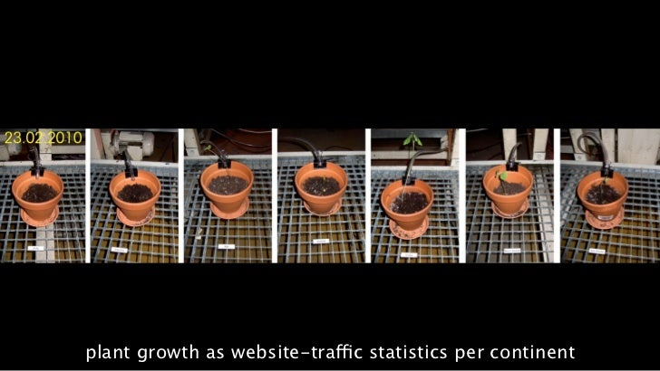plant growth as website-traffic statistics per continent