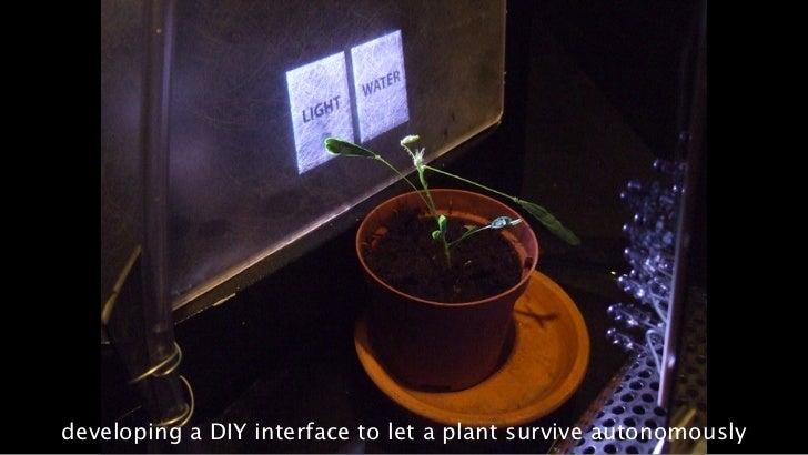 17developing a DIY interface to let a plant survive autonomously