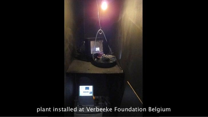 plant installed at Verbeeke Foundation Belgium23