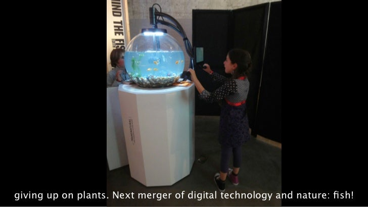 giving up on plants. Next merger of digital technology and nature: fish!