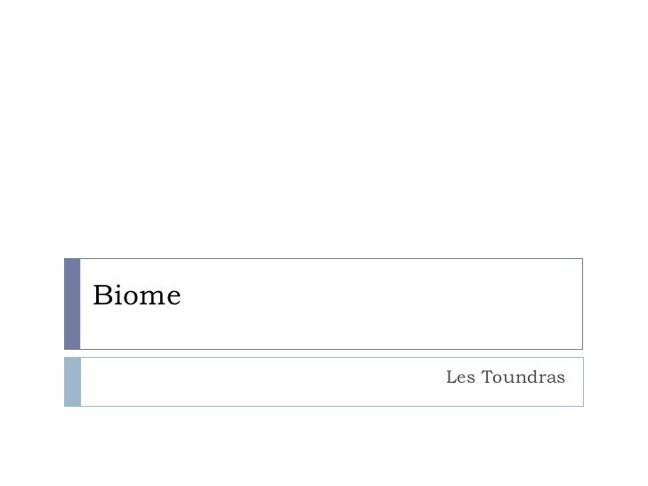 Biome Les Toundras