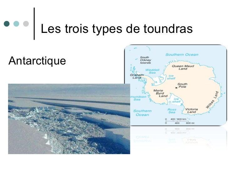 <ul><li>  Les trois types de toundras  </li></ul><ul><li>Antarctique </li></ul>