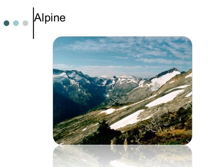 <ul><li>Alpine </li></ul>