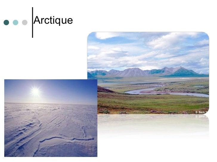 <ul><li>Arctique </li></ul>