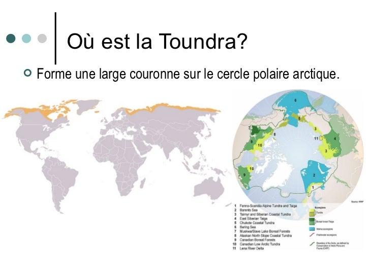 Où est la Toundra? <ul><li>Forme une large couronne sur le cercle polaire arctique.  </li></ul>