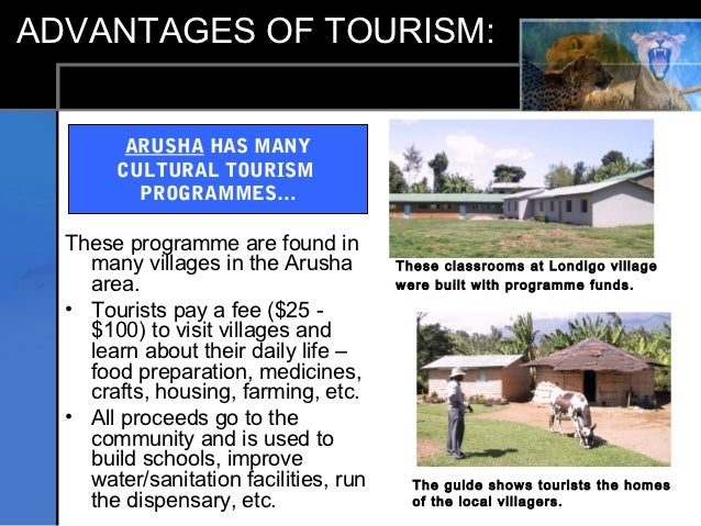 costs and benefits of tourism essay Tourism development: outline of advantages and disadvantages  low benefits (no job security,  e 3 travel and tourism - environment,.