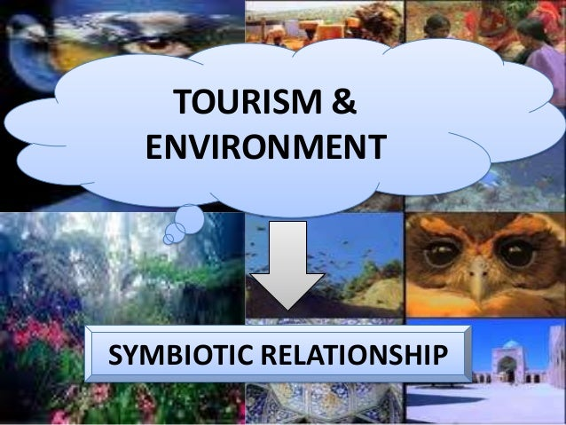tourism effects on the environment Tourism has become increasingly popular over the last century as more and more people have gained access to car travel, air travel and vacation time from.