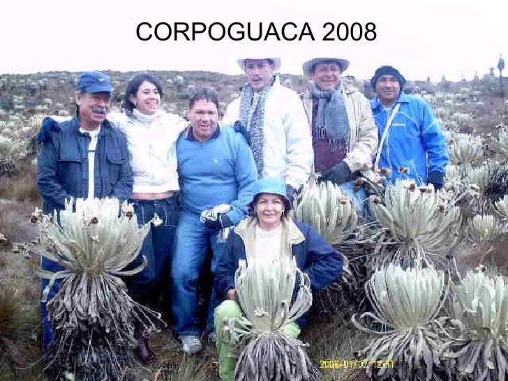 CORPOGUACA 2008