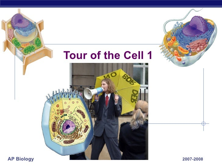 Tour of the Cell 1 2007-2008